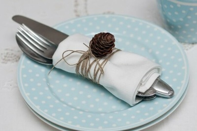 Serviette, Place Setting, Table Setting